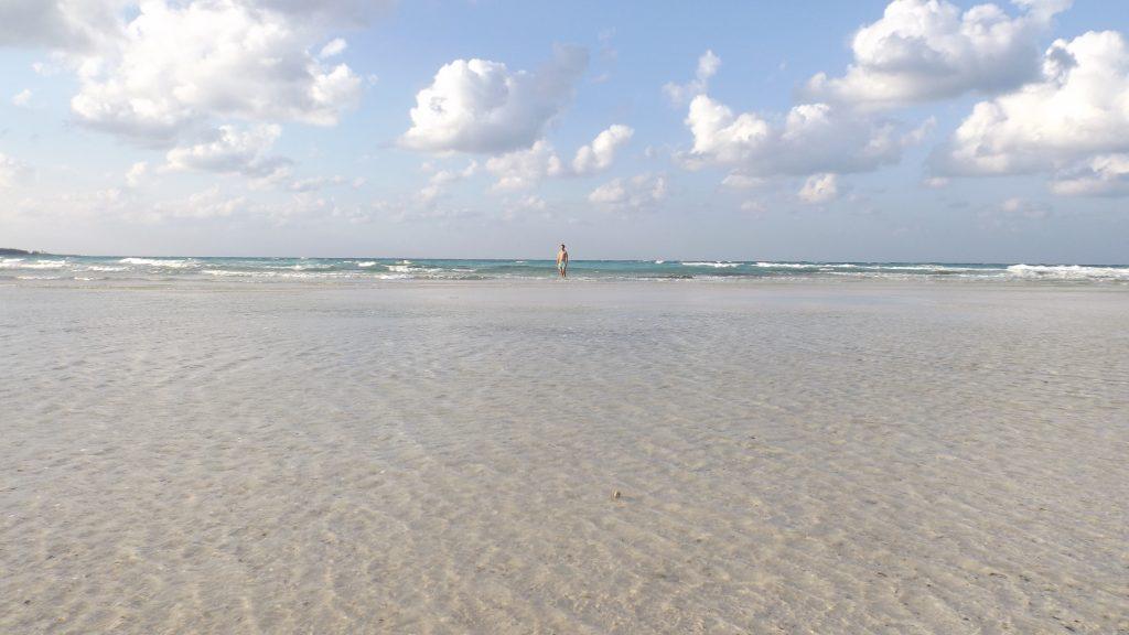 Cayo Coco y Cayo Guillermo: Las mejores playas de CUBA