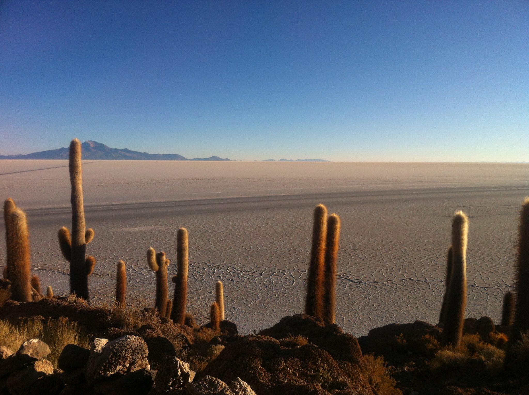 Img post Salar de Uyuni Isla del Pescado- Pasaporte y Millas