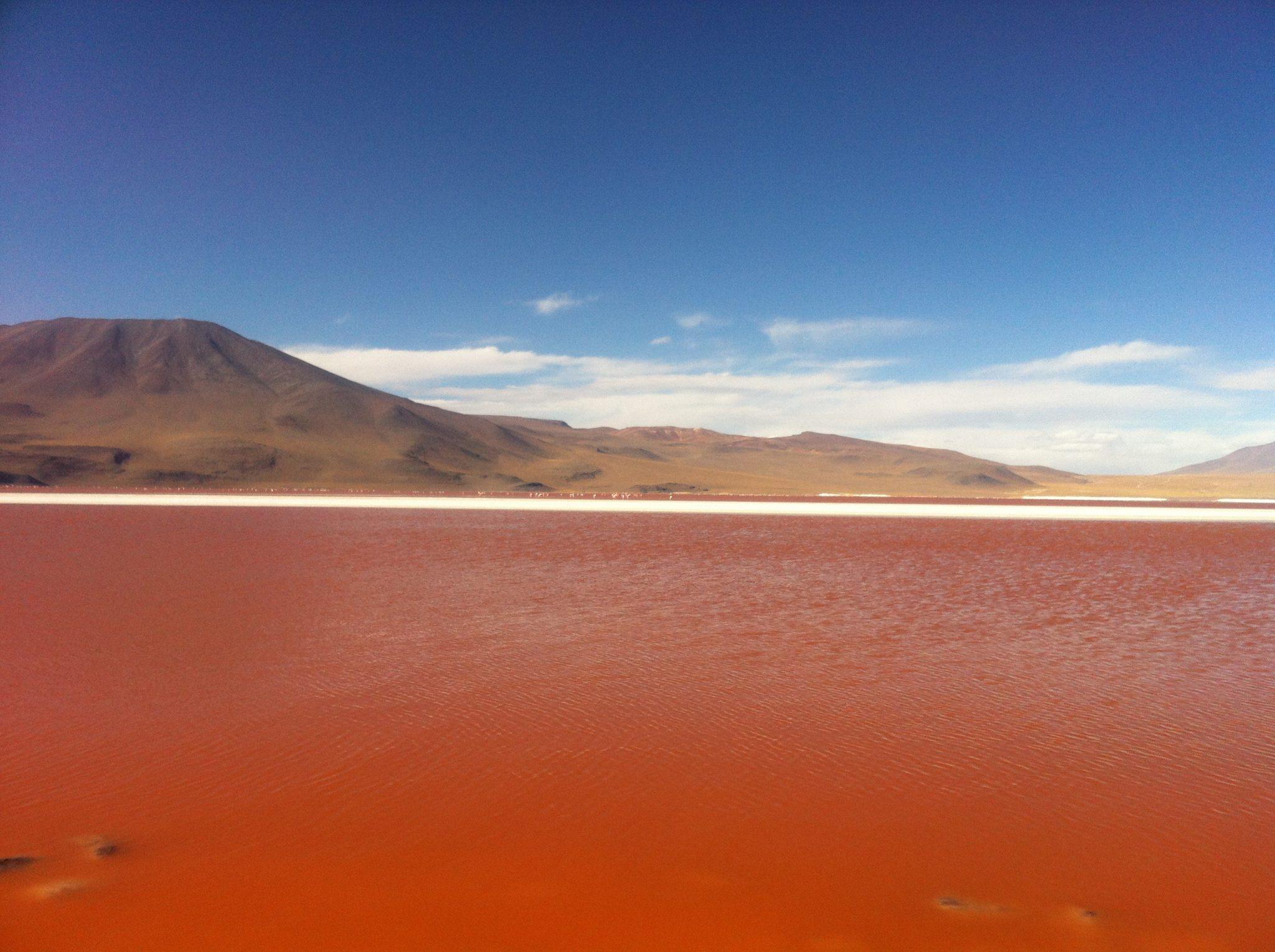 Img post laguna colorada2 Salar de Uyuni-Pasaporte y Millas