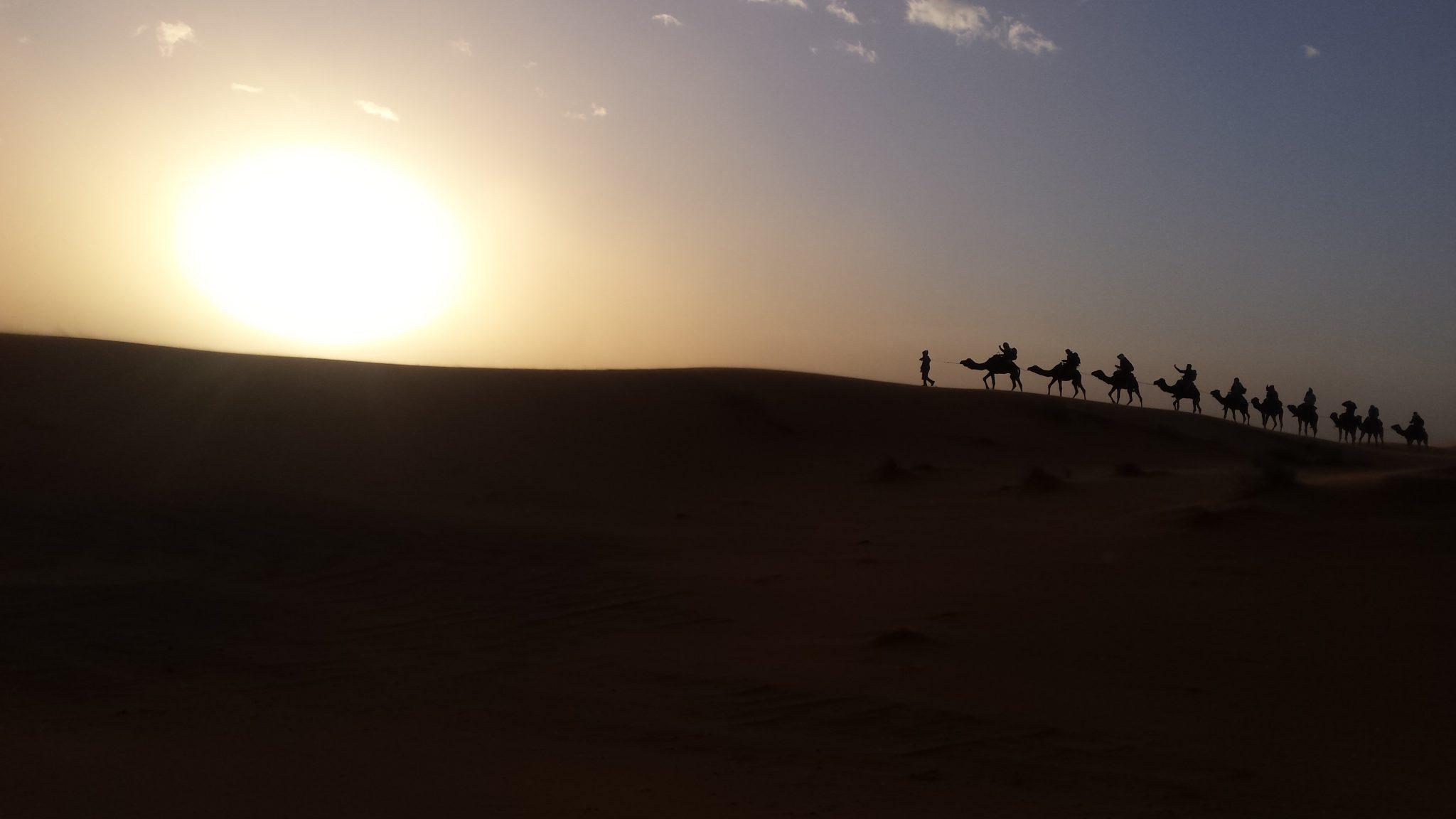 Img post Maltrato Camellos Marruecos. Qué saber antes de viajar a Marruecos- Pasaporte y Millas