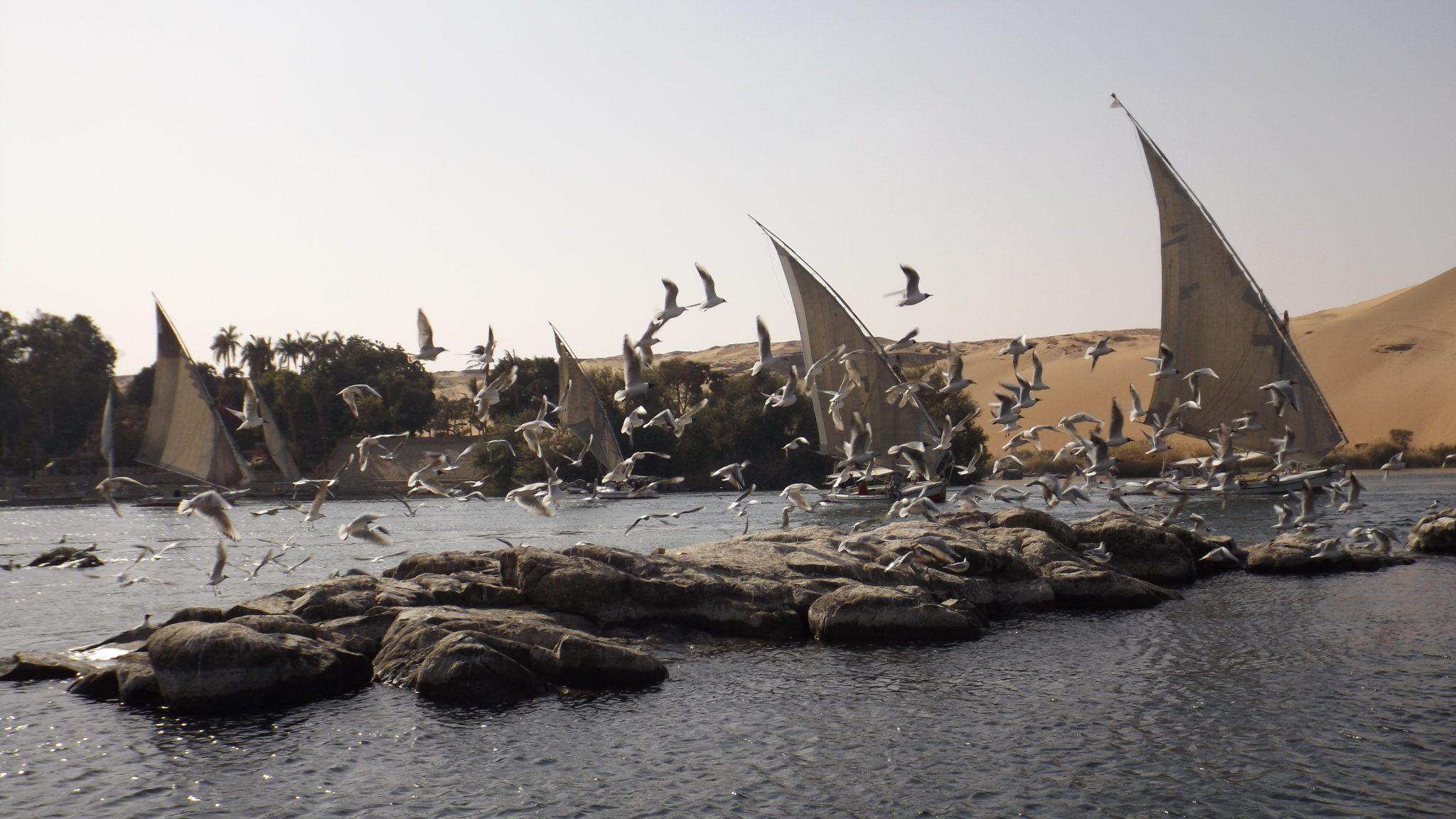 Post Egipto es seguro. Paseo por el Nilo- Pasaporte y Millas